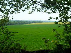 5.5.2014 - Looking towards The Roman Road.