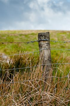 Barbed wire fence and wide open spaces.