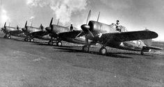 Dutch Buffalo fighters at rest, date unknown