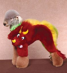 Wacky: It may not look quite as intimidating as a T-Rex but this poodle still makes a decent jurassic dinosaur Poodle Grooming, Cat Grooming, Extreme Pets, Funny Animals, Cute Animals, Crazy Animals, Creative Grooming, Dog Suit, Crazy Dog