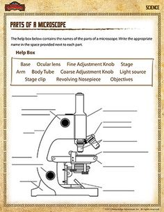 Print a microscope diagram microscope worksheet or practice free parts of a microscope label worksheet ccuart Images