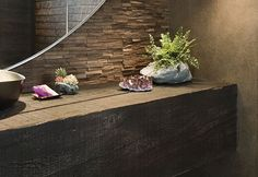 Plantscapes and mineral samples Creative Succulent Planter Ideas
