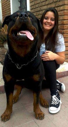 .a big body for a big heart to hold a lot of love! :) #rotties
