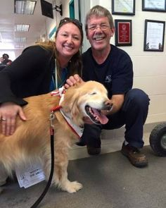 Born Without Eyes Smiley The Golden Retriever Becomes Therapy Dog - Born blind smiley the golden retriever becomes a loving therapy dog