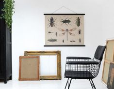 Wandbild von Insekten von HK Living