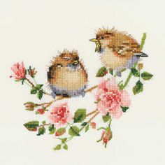 "Rose Chick-Chat (VPRO778)   Cute chickadee bird cross stitch design based on the watercolour paintings of Valerie Pfeiffer, produced by Heritage Crafts.   Contents: 14 count aida or 27 count evenweave fabric, DMC stranded cottons, chart, needle and full instructions.   Size: 4.25"" x 4.25"" (11.5cm x 11.5cm approx).     DELIVERY DETAILS: - Please allow upto 7 working days for dispatch.   See more Valerie Pfeiffer cross stitch kits"