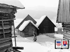 Grossmann Photo - Liptovska,Luzna  winter 1964