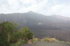 NEW PACKAGE!!! Eco Etna Valle del Bove tour - Take it Slowly and discover!