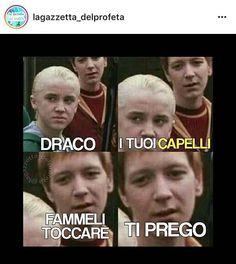 Harry Potter Wattpad, Harry Potter Quiz, Harry Potter Tumblr, Harry Potter Anime, Harry Potter Fan Art, Harry Potter Hogwarts, Harry Potter Dolls, Harry Potter Comics, Harry Porter