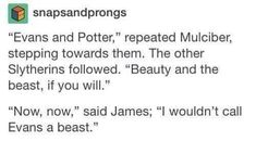 James and Lily Potter Harry Potter Puns, Harry Potter Marauders, Harry Potter Universal, Harry Potter World, The Marauders, Headcanon Harry Potter, Hogwarts, No Muggles, Lily Potter