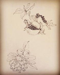 フルーツ# drawing #illustration #pomegranate #ザクロ #イラストレーション #果物