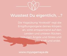 Diese Wirkungen hat die Yogaasana Krokodil – Famous Last Words Yin Yoga, Hormon Yoga, Yoga Meditation, Iyengar Yoga, Ashtanga Yoga, Fitness Logo, Yoga Fitness, Yoga Girls, Partner Yoga