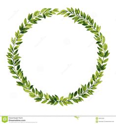 Green Leaf Watercolor Wreath - Download From Over 63 Million High Quality Stock Photos, Images, Vectors. Sign up for FREE today. Image: 59915250