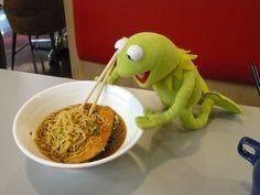 Kermit eating