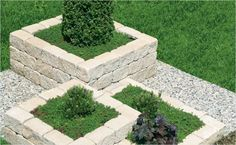 Pflanzen In Nanopics Steppengartenanlage Steingarten Anlegen