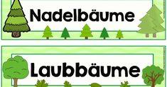 Für unsere Pinnwand habe ich drei Schilder zum Thema Wald erstellt. Falls noch eine andere Überschrift benötigt wird, gerne in die Kommenta...