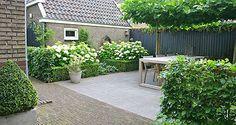 Witte hortesia in buxushaagje. Tuinontwerp - tuinontwerpen | Foto's voorbeelden moderne tuinarchitectuur pag. 4