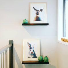 Floating Shelves, Floating Bookshelves
