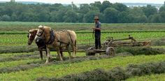 Amish and Plain People of Lancaster County, PA