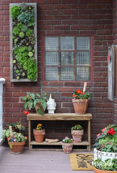 Outdoor Project decor with DIY projects and vertical Hens and Chicks hanging garden.