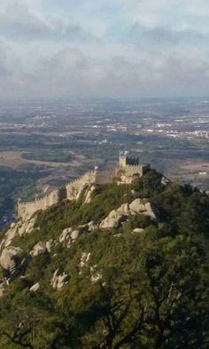 Natureza ( Castelo dos Mouros Sintra,)