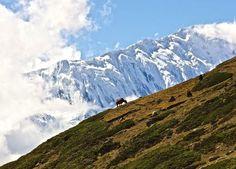 top-10-trekking-02-copy