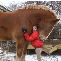 A huge hug for a huge horse. The horse is hugging back (with his eyes closed), how sweet