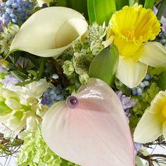 Bouquet Tales (close up) - Spring - with a seasonal touch of Narcissus, Hyacinthus, Astrantia, Muscari.