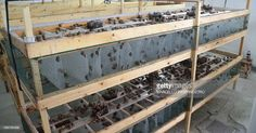 A picture shows a breeding of Aspersa Muller Madonita snails in the snail farm 'La Lumaca Madonita' which produces snail caviar , on November 2015 in Campofelice di Roccella near Palermo, Sicily. Get premium, high resolution news photos at Getty Images Snail Farming, Aqua Farm, Vertical Farming, Aquaponics, Picture Show, Homesteading, Backyard, Layout, Palermo Sicily