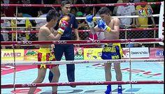 Liked on YouTube: ศกจาวมวยไทยชอง3ลาสด 4/4 9 เมษายน 2559 ยอนหลง Muaythai HD youtu.be/-ooidOk1RfA from Flickr http://flic.kr/p/G547xq via Digitaltv Thaitv