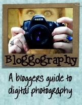 Learning ISO with Bloggography - Better in Bulk - Family photographer with a large family
