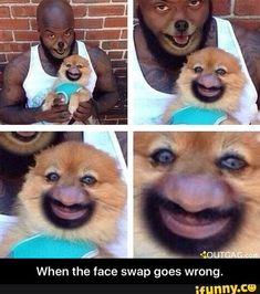 Image result for face swap gone wrong