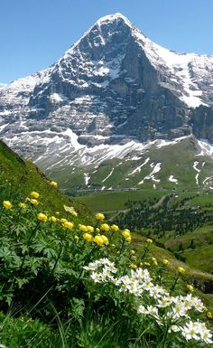 Swiss Alps - The Eiger, Berner Oberland Eiger North Face, La Provence France, Places To Travel, Places To See, Beautiful World, Beautiful Places, Places Around The World, Around The Worlds, Landscape Photography