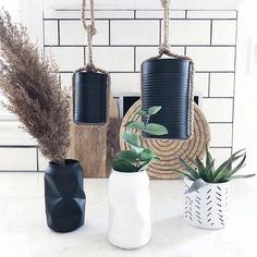 Looking for an easy and stylish #DIYproject? 💡 Forest And City Home took used food cans and crunched pop cans and turned them into modern decor! . #RustoleumCAN #SprayPaint #PaintersTouch #Upcycle #EasyDIY #DIY #DIYDecor Pop Cans, Spray Painting, Modern Decor, Upcycle, Easy Diy, Diy Projects, Touch, Canning, Stylish