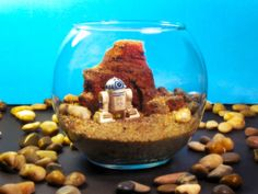 Mini R2D2 on Tatooine  Star Wars Terrarium World by Megatone230,