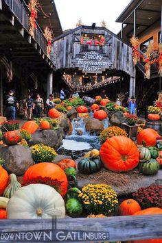 Beautiful Fall in Gatlinburg, TN. I SOOO WANT TO GO TN During THE FALL! Preeeeety!