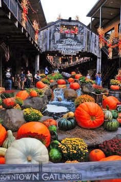 Beautiful Fall in Gatlinburg, TN. I SOOO WANT TO GO TN During THE FALL! Preeeeety!