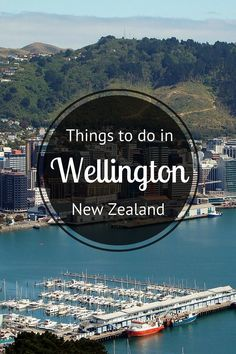 Insider Tips - What to Do in Wellington New Zealand. Tips on things to do in Wellington restaurants with the best food and drinks places to go shopping festivals places to stay like hotels and much more. New Zealand North, Visit New Zealand, New Zealand Travel, Places To Travel, Places To See, Travel Destinations, Auckland, Lonely Planet, Solo Travel