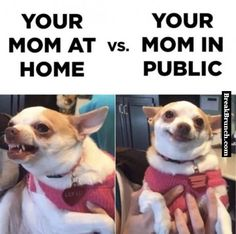 Mom at home vs mom in public - http://breakbrunch.com/funny-picture-2169
