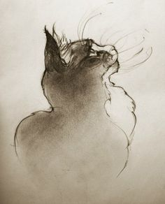 Anna Jegorova - Cats