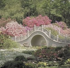 Nature Aesthetic, Flower Aesthetic, Different Aesthetics, Fairytale Cottage, Cottage In The Woods, Plein Air, Aesthetic Pictures, Garden Bridge, Countryside