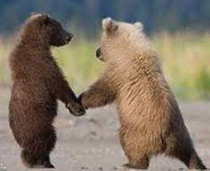 bear friendship I guess!