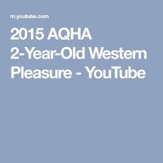 2015 AQHA 2-Year-Old Western Pleasure - YouTube