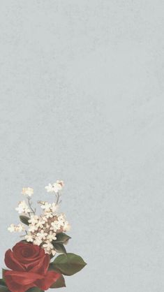 Iphone Wallpaper Sky, Flower Phone Wallpaper, Tumblr Wallpaper, Autumn Aesthetic, Quote Aesthetic, Quote Backgrounds, Wallpaper Backgrounds, Diwali Poster, Aesthetic Template