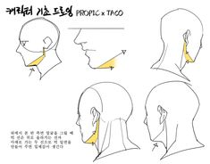 3d Anatomy Model, Anatomy Drawing, Manga Drawing, Drawing Reference Poses, Drawing Tips, Art Reference, Head Anatomy, Body Anatomy, Noragami