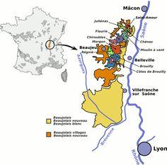 4- Appellation Beaujollais