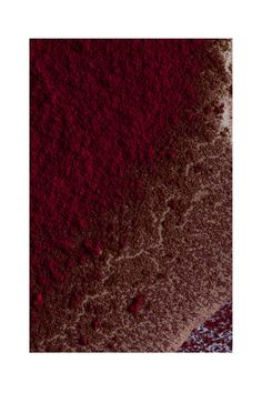 Cosmetic_Texture_Powder_Red
