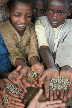 Fair trade coffee https://www.facebook.com/pages/Coffee-Society/651773478236556