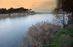 Diossina nel #Roia, il fiume che alimenta la rete idrica di #Imperia. Anguille contaminate: la Provincia vieta la pesca.
