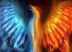 Mythology images Phoenix wallpaper and background photos . Bird Pictures, Pictures Images, Photos, Fantasy Creatures, Mythical Creatures, Mythical Birds, Strange Creatures, Phoenix Mythology, Arte Yin Yang